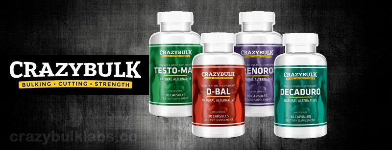 World's Best Muscle Building Supplement Stacks